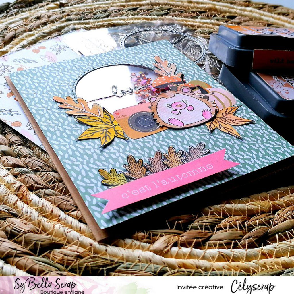 UNE SHAKER CARD SO'FALL PAR CELYSCRAP