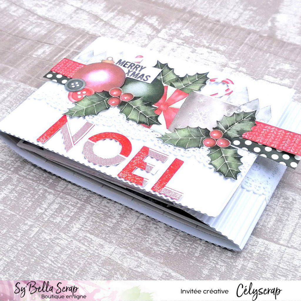 MINI-ALBUM DE NOEL EN VIDEO AVEC CELIE !